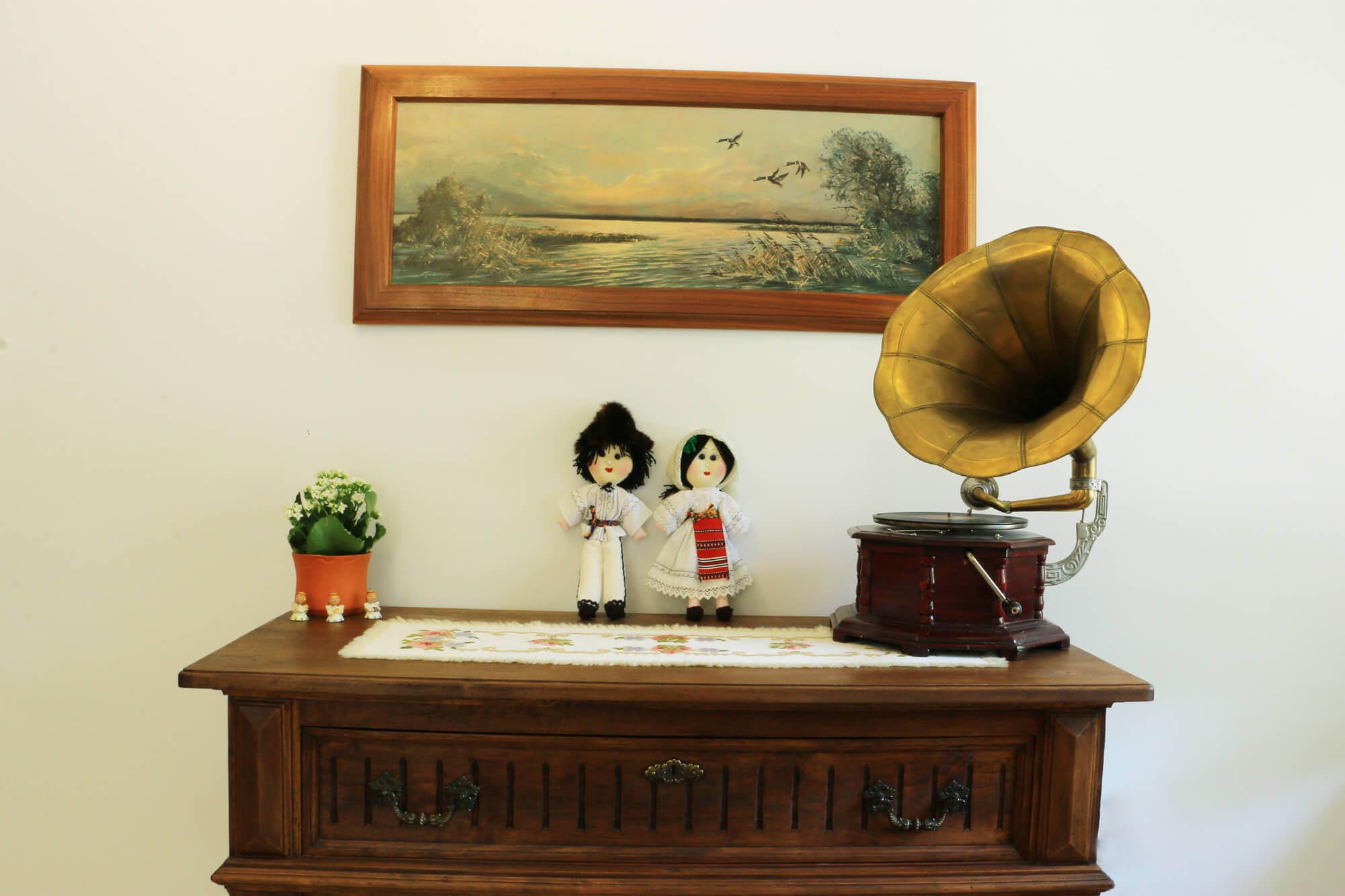 cabana izvoranu buzau camera 3 fonograf